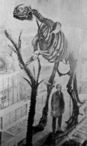 Hadrosaurus / Wikimedia Commons