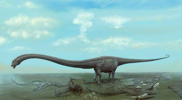 Mamenchisaurus / New Dinosaurs
